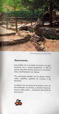 Bachoqueta