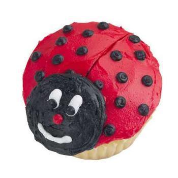 [ladybug]