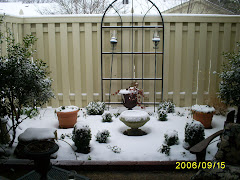 little blanket of snow