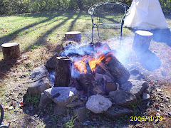 """our """"Indian Camp"""" firepit"""