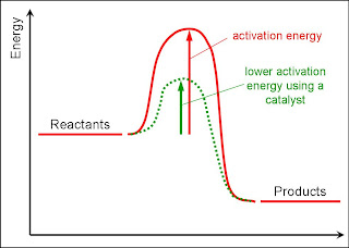 Year 10 GCSE Science: March 2013