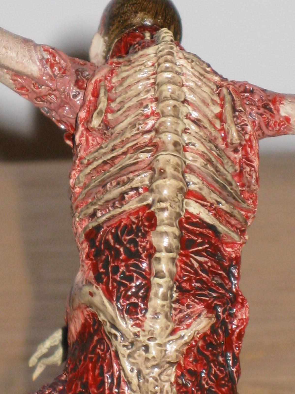 Real Human Spinal Cord