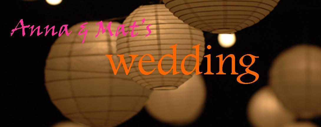 Anna and Mat's wedding
