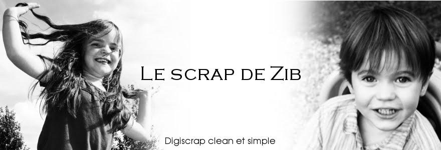 Le Scrap de Zib