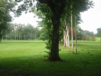 Roaring River Golf Course Belize