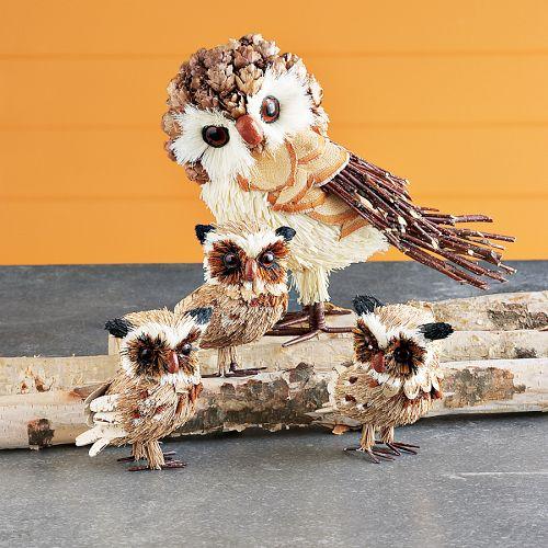 [Pinecone+owl]