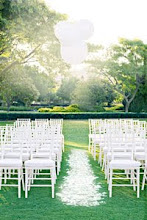TIFFANY CHAIRS FOR HIRE