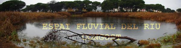 ESPAI FLUVIAL DEL RIU CONGOST