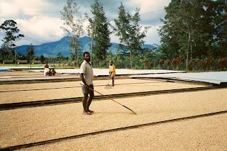 فوائد و اضرار القهوه sigri_05.jpg