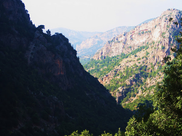 Trip to the North of Lebanon