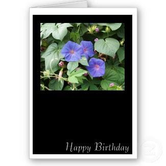 என் மகனுக்கு இனிய பிறந்த நாள் நல் வாழ்த்துக்கள்....(கலைநிலா ) - Page 2 Tl-Flowers%2Bin%2BGreece,%2BHappy%2BBirthday
