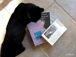 Les auteurs grecs contemporains dans ma bibliothèque