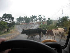 OBEYING RULES OF THE ROAD IN GAMALAKHE