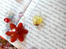 Caderno original-Poema patchwork Cristina Siqueira
