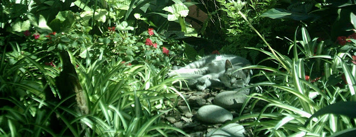 Jardines de Alejandria