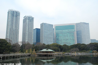 Hamarikyu Garden