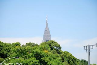 catching a glimpse of a skyscraper in Tokyo