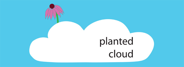 planted cloud
