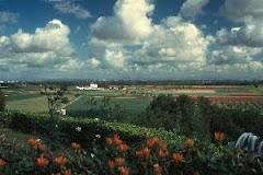 Las Vegas del Guadiana, probablemente el jardín más grande de Europa