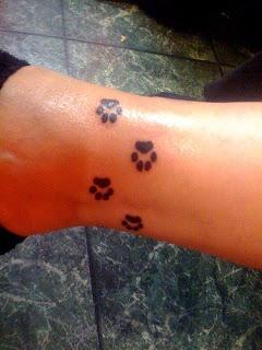 patinhas de cachorro