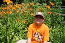 Mason's favorite flower, Tiger Lily