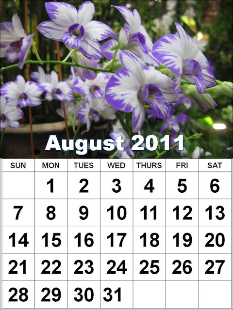 printable august 2011 calendar. august 2011 printable calendar