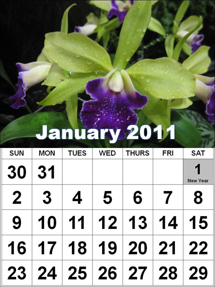 2011 calendar with Canadian holidays Monthly World Holidays January 2011