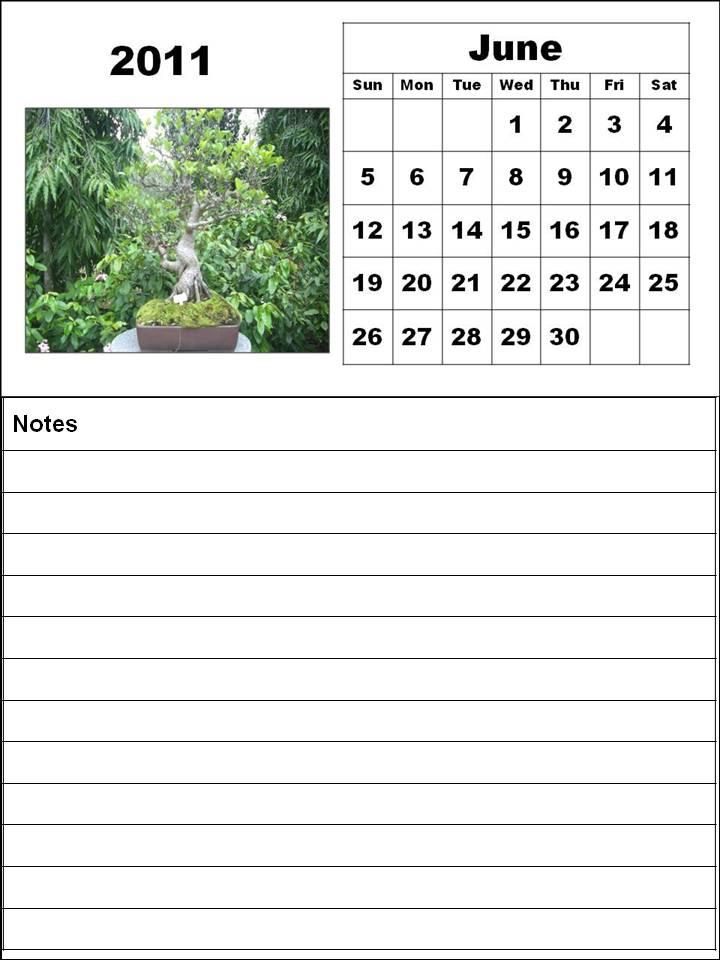 june 2011 calendar print. june 2011 calendar printable.