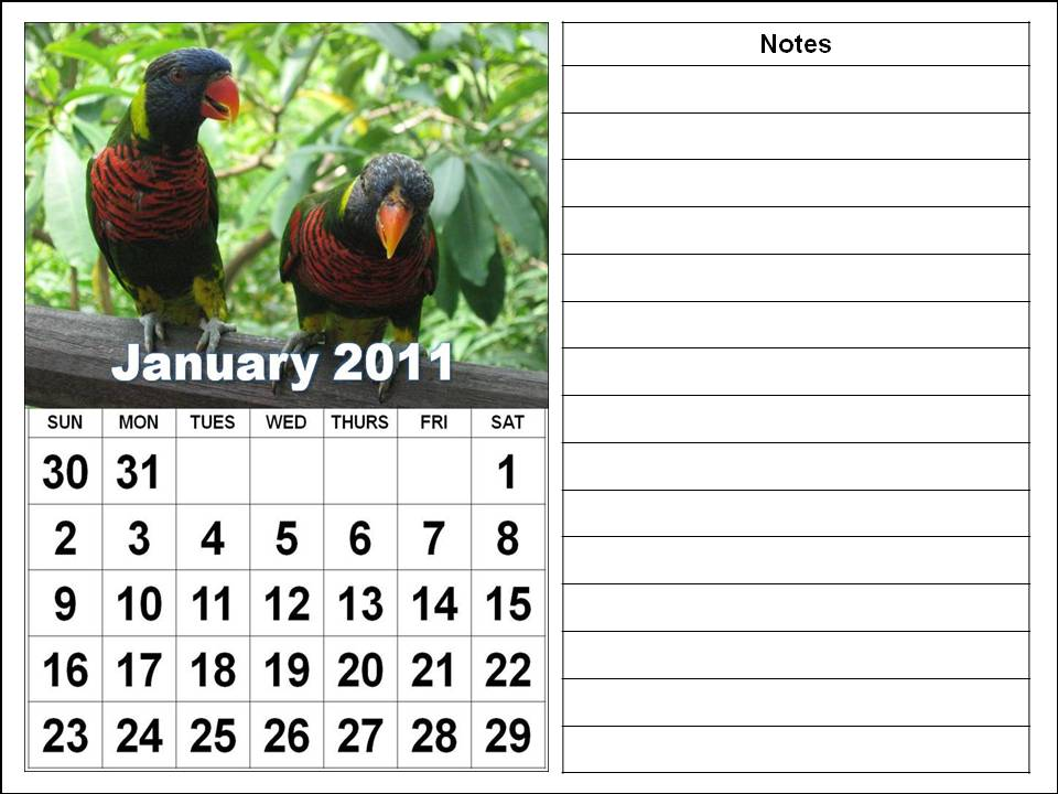 2011 calendar printable free. 2011 calendar printable