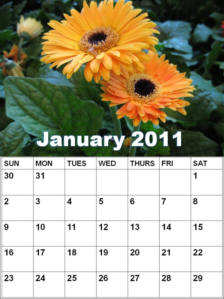 2011 Calendar Month By Month. 2011 calendar; month of