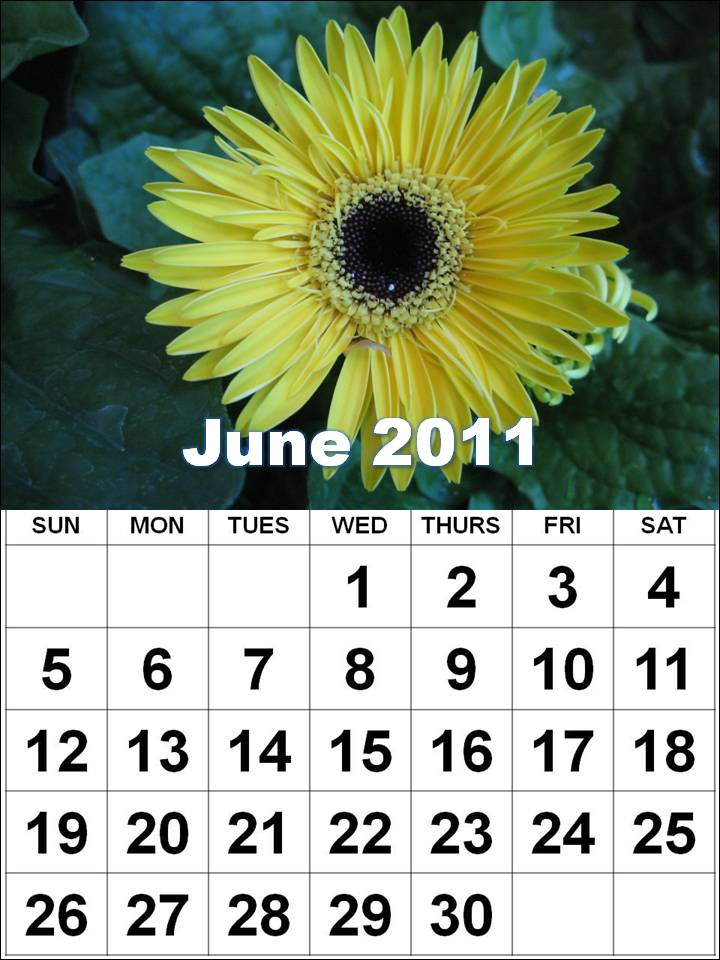 june calendar for 2011. 2011 Calendar Vector
