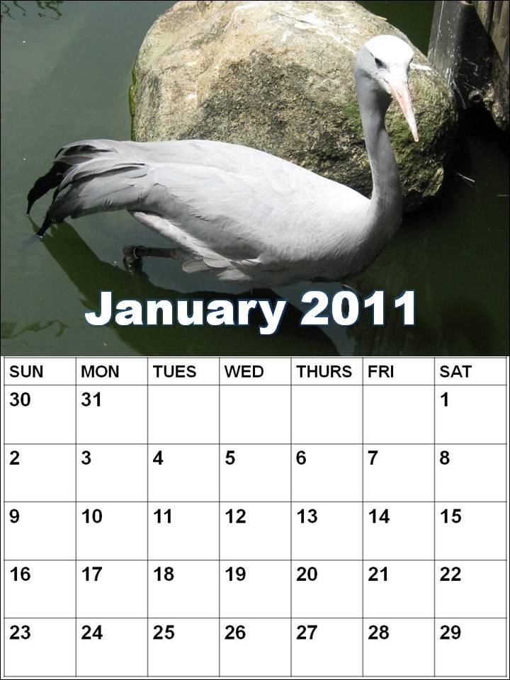 Blank Calendar 2011 January or Blank Planner 2011 January