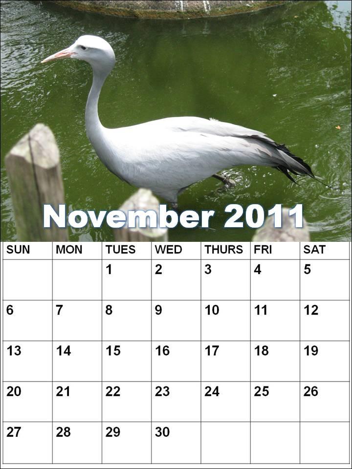 calendar november 2011. NOVEMBER 2011 BLANK CALENDAR