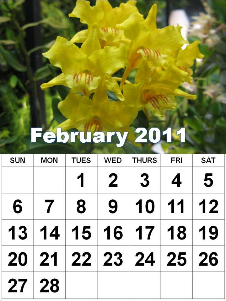 printable february calendar 2011. top of page :: To download and