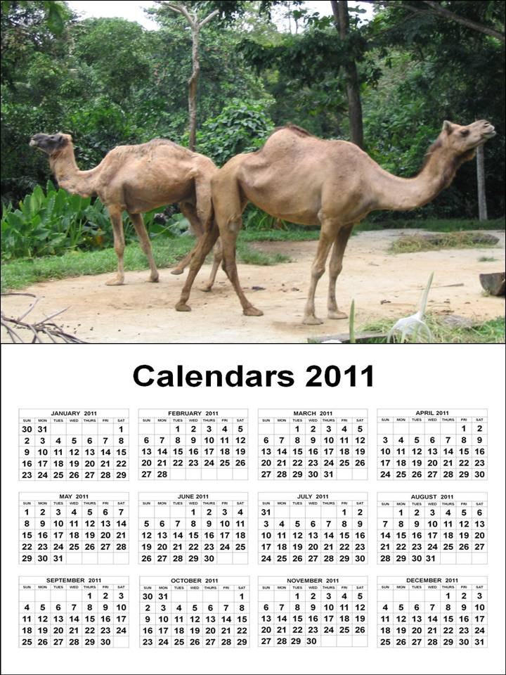 yearly calendar 2012 printable. calendar 2011, calendar 2012