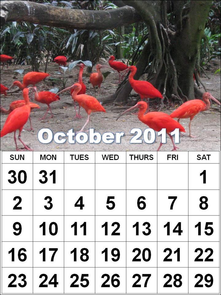 2011 calendar with holidays uk. 2011 calendar uk holidays.