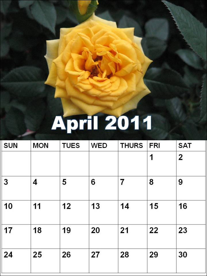 2011 calendar printable april. Blank Calendar 2011 April or