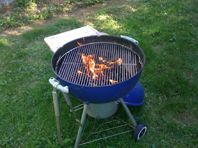 Weber Natural Gas Bbq Sale