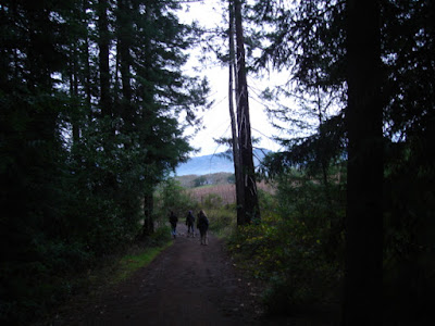 hike in twilight christmas day