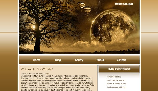 Moon Light Dark Brown CSS Website Template