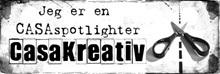 CASAspotlight - uke 50