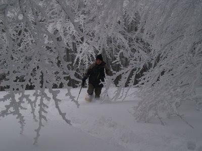 Sulla neve di Campigna con le ciaspole