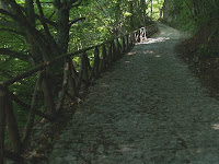 Mulattiera di Sant'Alberico