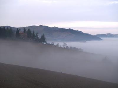 Nebbia a San Donnino
