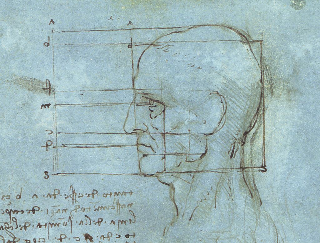 [Image: Proportions_of_the_Head.jpg]