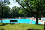 The Unofficial Morris City Pool in Goold Park Blog