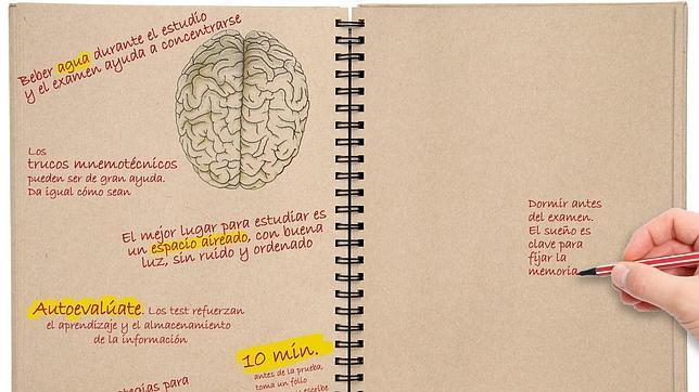 cerebro memoria sueño trucos
