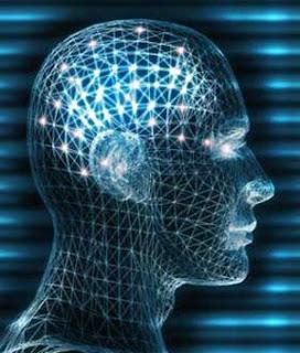 meditacion modifica cerebro