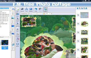 EM Free Photo Collage showing interface