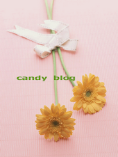 Blog candies